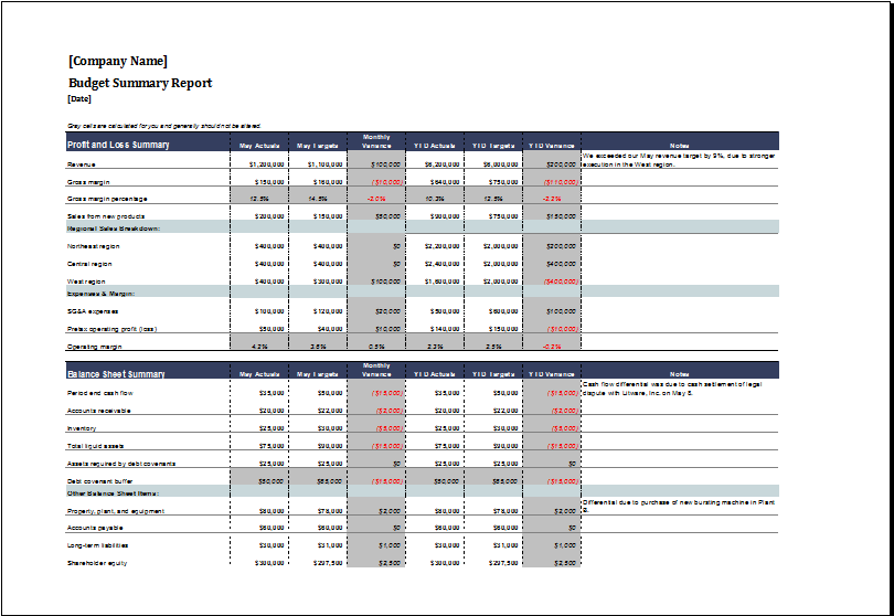 monthly operational budget report